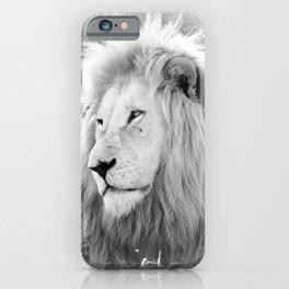 White Lion Male Portrait iPhone Case