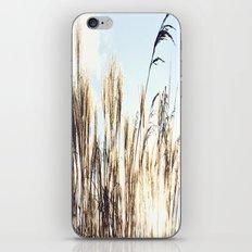 sun setting on reeds iPhone & iPod Skin