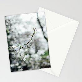 Holland Park #4 Stationery Cards