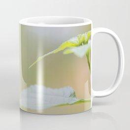 Postman butterfly Coffee Mug