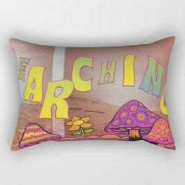 Searching Rectangular Pillow