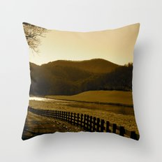 Down the Golden Loop Throw Pillow