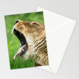 Yawning Lion Stationery Cards