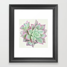 suc. #1 Framed Art Print