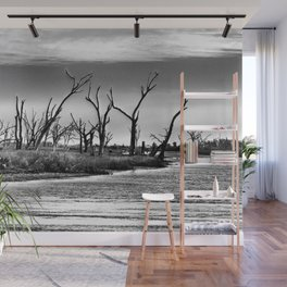 Dying Cypress Trees, Louisiana Wall Mural