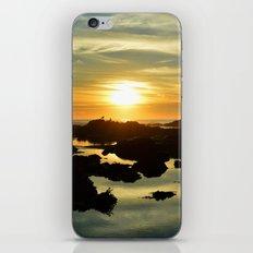 enticing iPhone & iPod Skin