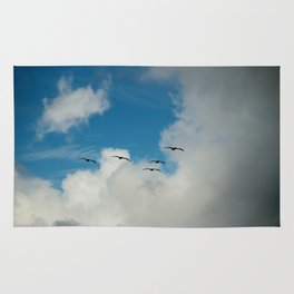 Flying Into The Storm Rug