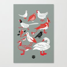 the 12 Birds of the season Canvas Print