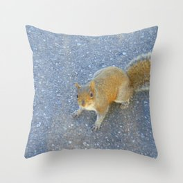 Street Smart Squirrel Throw Pillow
