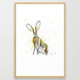 Jack Rabbit I Framed Art Print