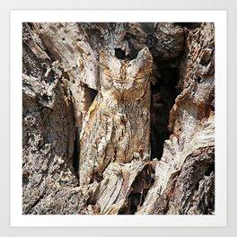 Wood Owl Art Print