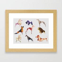 Dog breeds Framed Art Print