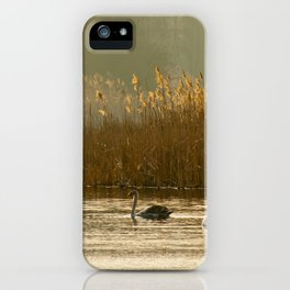 Lake of swans iPhone Case