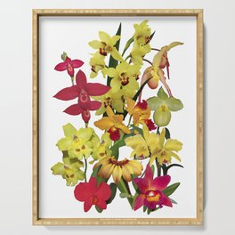 Orchids - Hot Colors! On white Serving Tray