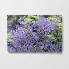 Longwood Gardens - Spring Series 209 Metal Print