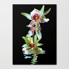 Green flowered Cymbidium Canvas Print