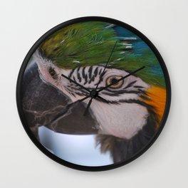 Beautiful Parrot Head Wall Clock
