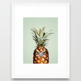 PINEAPPLE OWL Framed Art Print