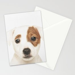 Jack Russell Puppy Stationery Cards