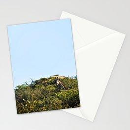 Giraffe. Stationery Cards