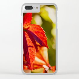 Red Autumnlights- Indian Summer VI Clear iPhone Case