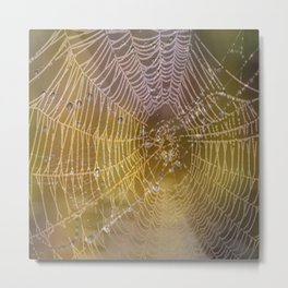 Double Spider Web Metal Print