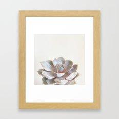 Pink Succulent Framed Art Print