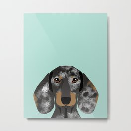 Doxie Dachshund merle dapple dog cute must have dog accessories dog gifts cute doxies dachshunds des Metal Print