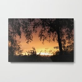 Summer night 2017 Metal Print