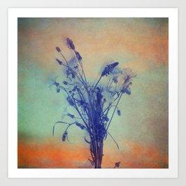 Small Beauties of Nature Art Print