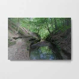 Elfin Canyon  Metal Print