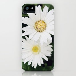 Two Daisies iPhone Case