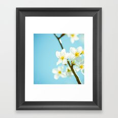 Blue & Blossoms Framed Art Print