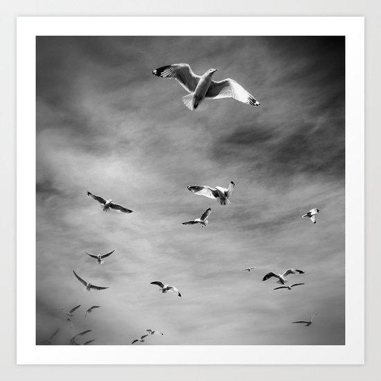 Seagulls, Grey Art Print
