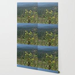 Wildflowers in the Blue Ridge Wallpaper