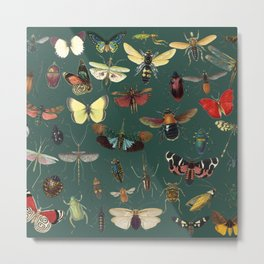 Lovely Butterfly Green Metal Print