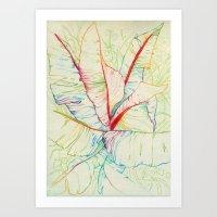 A lo color Art Print
