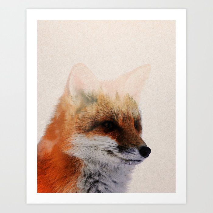Discover the motif FOX by Andreas Lie  as a print at TOPPOSTER