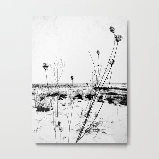 | the desolation flowers | Metal Print