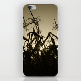 Peek-a-boo! iPhone Skin