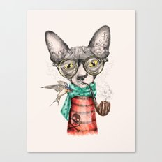 Mr.Peterbald Canvas Print