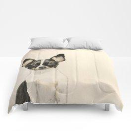 Chihuahua - the tiny dog Comforters