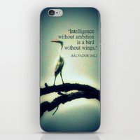 dali iPhone & iPod Skins featuring Dali by Nichole B.