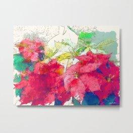 Mixed color Poinsettias 3 Serene Metal Print