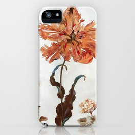 A Parrot Tulip Auriculas & Red Currants with a Magpie Moth Caterpillar Pupa by Maria Sibylla Merian iPhone Case