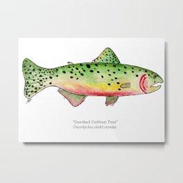 Greenback Cutthroat Trout Metal Print
