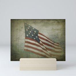 Fifteen Star Flag Mini Art Print