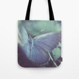 Midnight flight Tote Bag