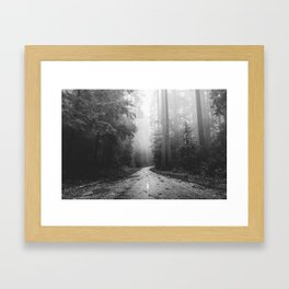 Redwood Forest Adventure Black and White - Nature Photography Framed Art Print