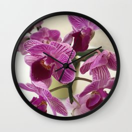 Pink and Sweet Petite Orchids Wall Clock